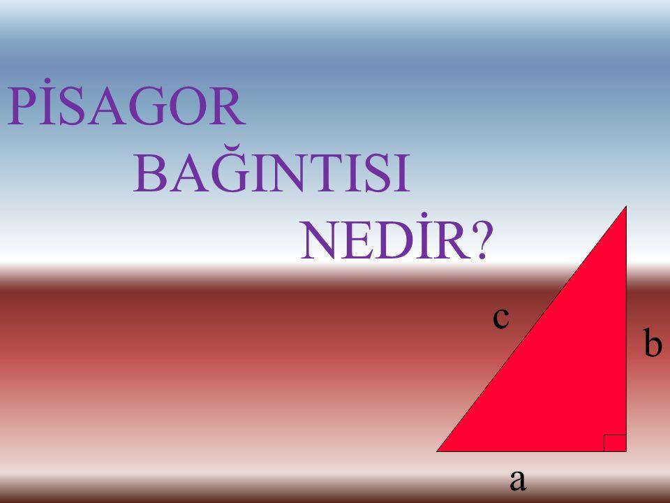 Pisagor M.Ö. 500'lü yıllarda yaşamış Yunan filozof ve matematikçisidir. Matematik ve Müziği buluşturan Pisagor, kendi adıyla anılan Pisagor Teoremi il