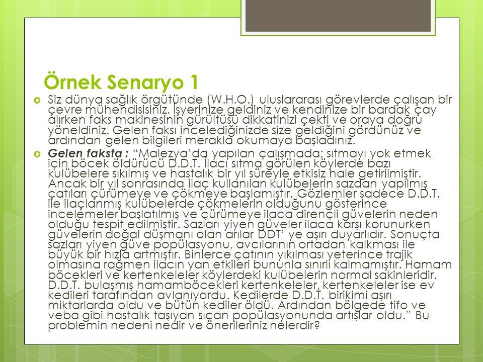 Örnek Senaryo 1  Siz dünya sağlık örgütünde (W.H.O.) uluslararası görevlerde çalışan bir çevre mühendisisiniz.
