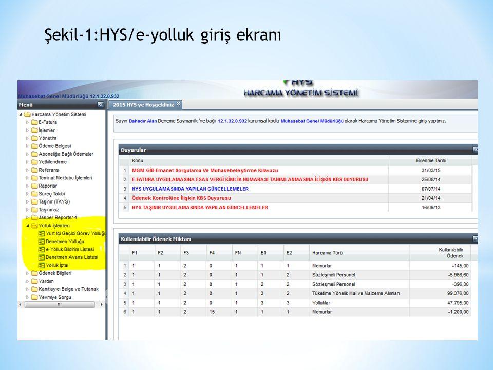 Şekil-1:HYS/e-yolluk giriş ekranı