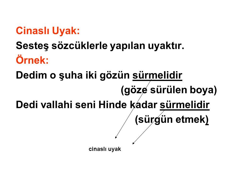 Cinaslı Uyak: Sesteş sözcüklerle yapılan uyaktır. Örnek: Dedim o şuha iki gözün sürmelidir (göze sürülen boya) Dedi vallahi seni Hinde kadar sürmelidi