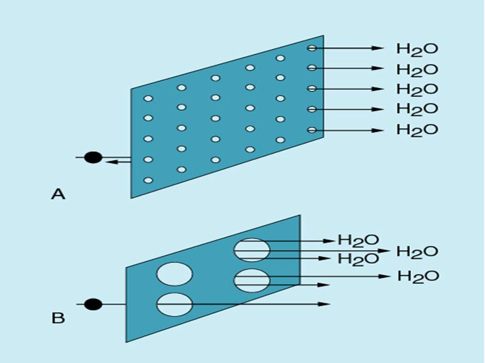 Membran Transport Mekanizmaları Ultrafiltrasyon Membranın iki tarafında bulunan kan kompartmanı ile diyalizat kompartmanı arasındaki basınç farkı solütlerin geçirgenliğini etkir.
