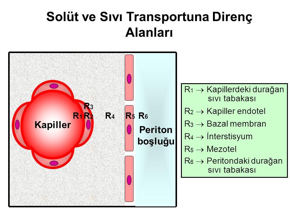 Solüt ve Sıvı Transportuna Direnç Alanları R 1  Kapillerdeki durağan sıvı tabakası R 2  Kapiller endotel R 3  Bazal membran R 4  İnterstisyum R 5  Mezotel R 6  Peritondaki durağan sıvı tabakası Kapiller Periton boşluğu R2R2 R1R1 R3R3 R4R4 R5R5 R6R6