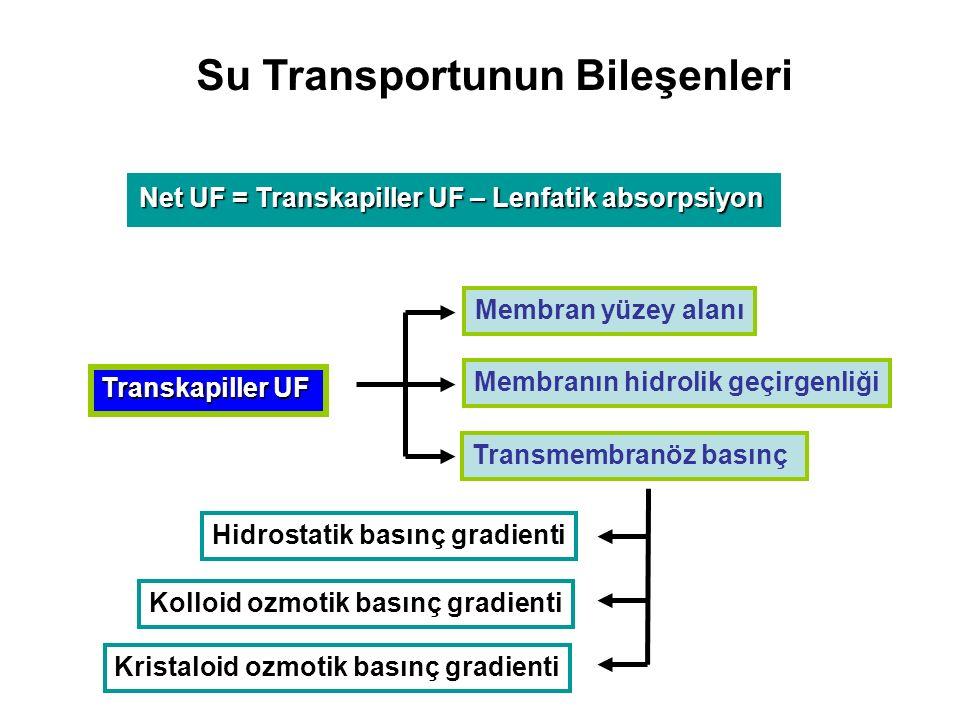 Su Transportunun Bileşenleri Net UF = Transkapiller UF – Lenfatik absorpsiyon Membran yüzey alanı Membranın hidrolik geçirgenliği Hidrostatik basınç gradienti Kolloid ozmotik basınç gradienti Kristaloid ozmotik basınç gradienti Transkapiller UF Transmembranöz basınç