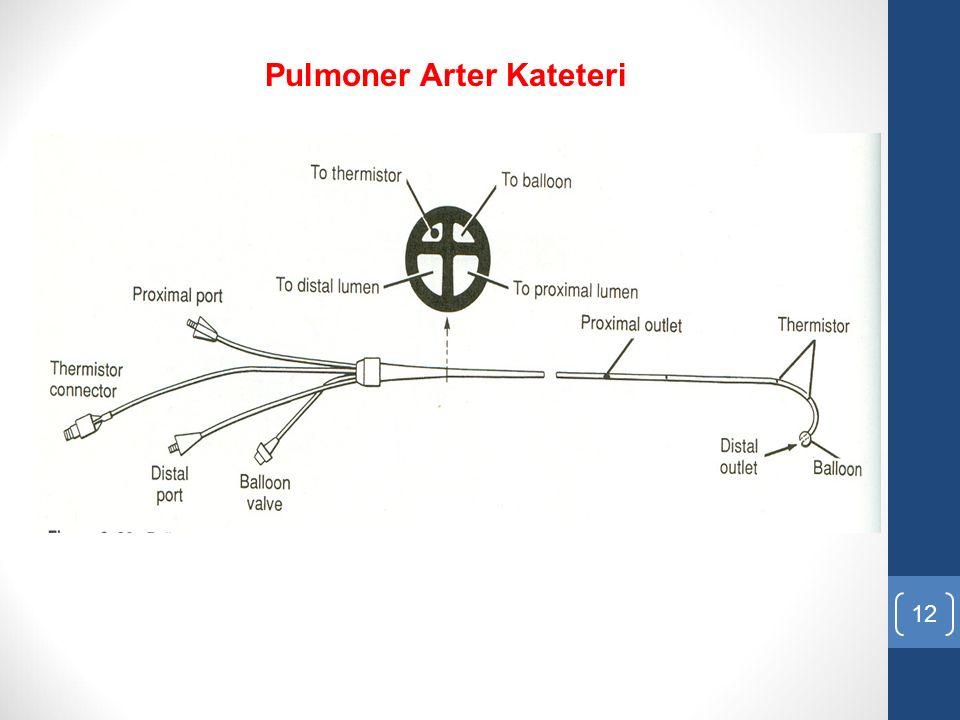 12 Pulmoner Arter Kateteri