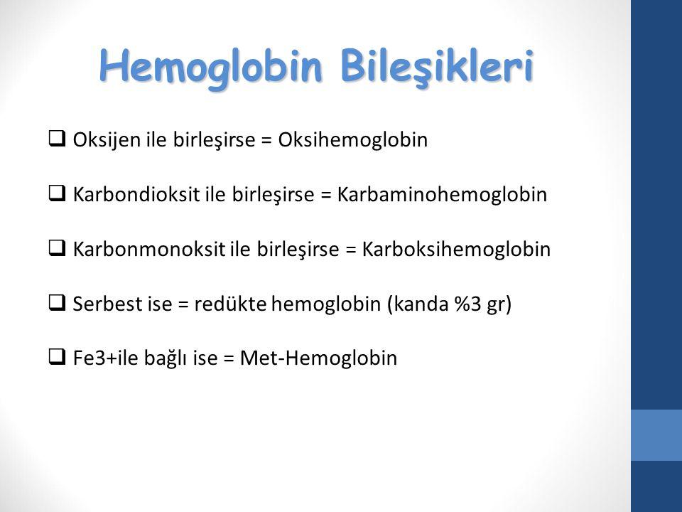 Hemoglobin Bileşikleri  Oksijen ile birleşirse = Oksihemoglobin  Karbondioksit ile birleşirse = Karbaminohemoglobin  Karbonmonoksit ile birleşirse