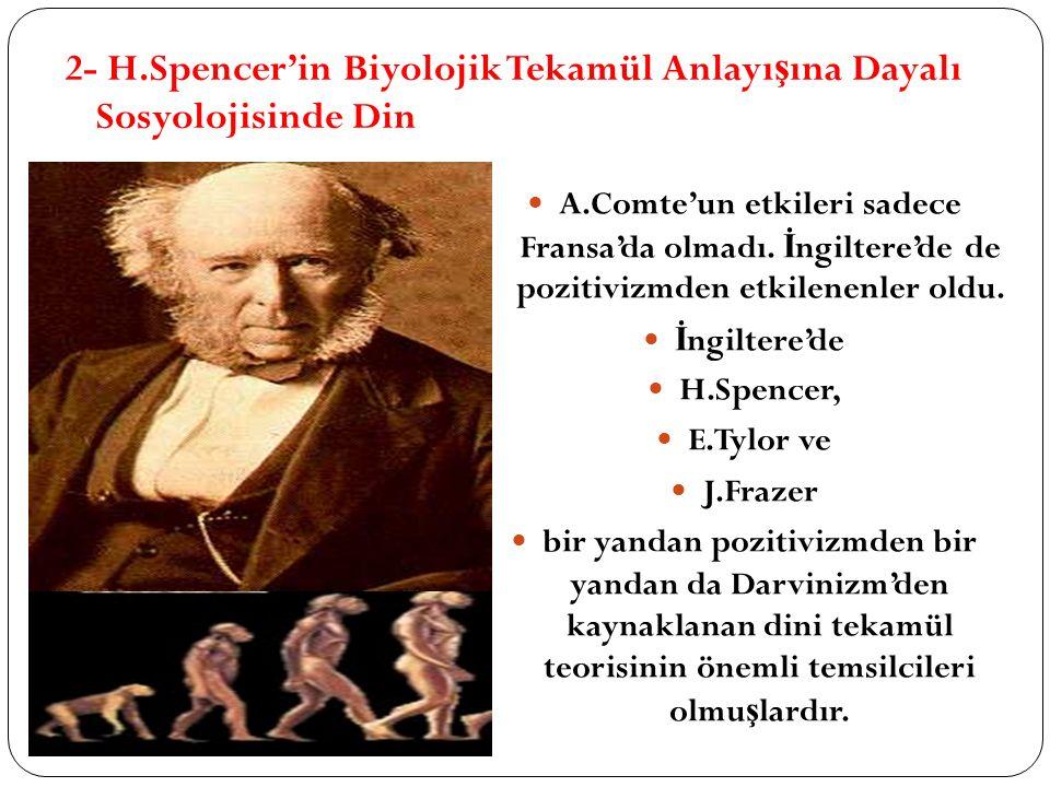 2- H.Spencer'in Biyolojik Tekamül Anlayı ş ına Dayalı Sosyolojisinde Din A.Comte'un etkileri sadece Fransa'da olmadı. İ ngiltere'de de pozitivizmden e