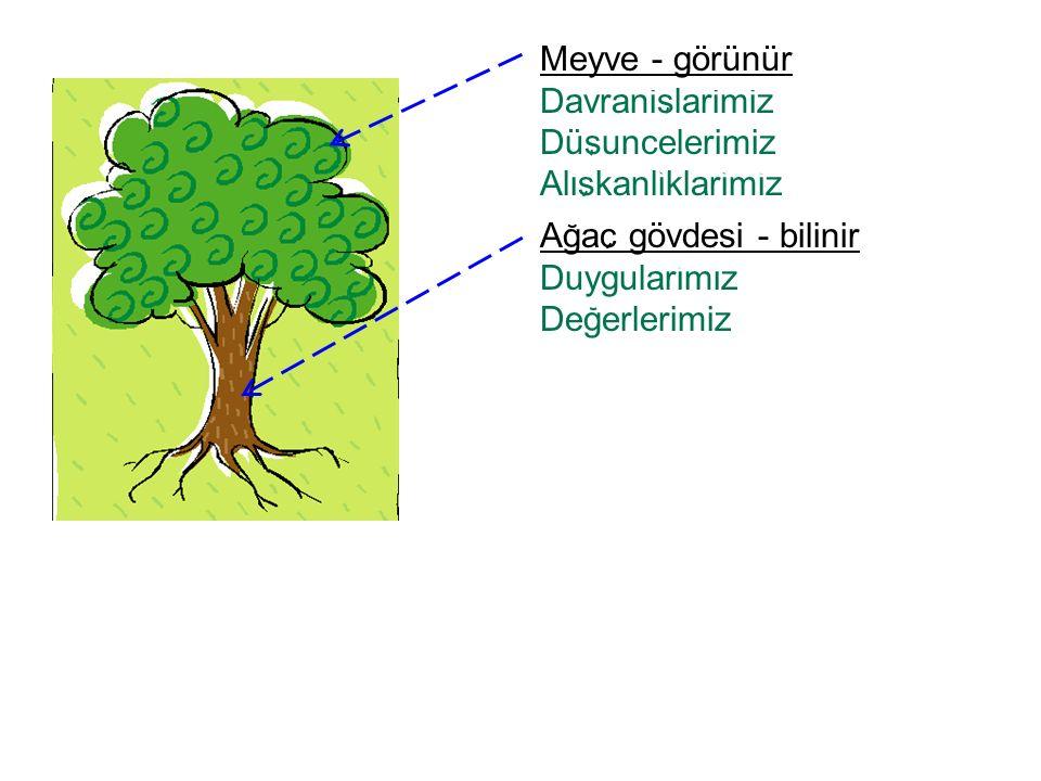 Agac gövdesi - bilinir Duygularimiz Degerlerimiz Meyve - görünür Davranislarimiz Düsuncelerimiz Aliskanliklarimiz