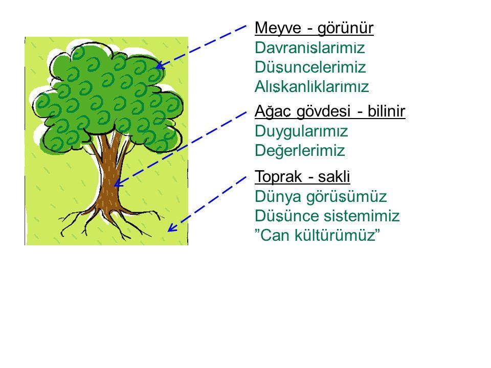 Agac gövdesi - bilinir Duygularimiz Degerlerimiz Meyve - görünür Davranislarimiz Düsuncelerimiz Aliskanliklarimiz Toprak - sakli Dünya görüsümüz Düsün