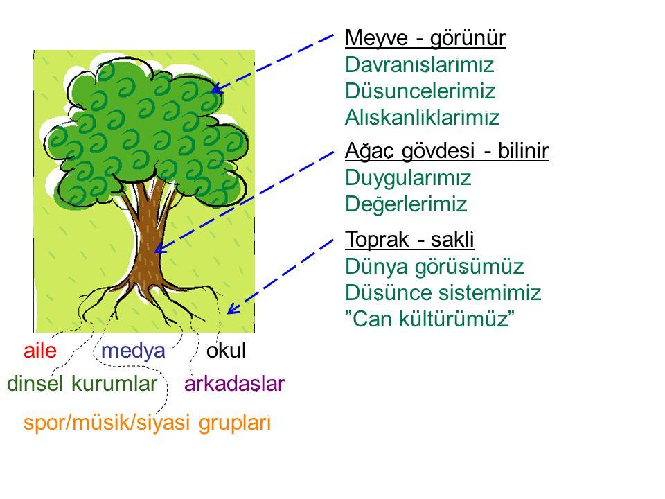 arkadaslar spor/müsik/siyasi gruplari dinsel kurumlar Agac gövdesi - bilinir Duygularimiz Degerlerimiz Meyve - görünür Davranislarimiz Düsuncelerimiz