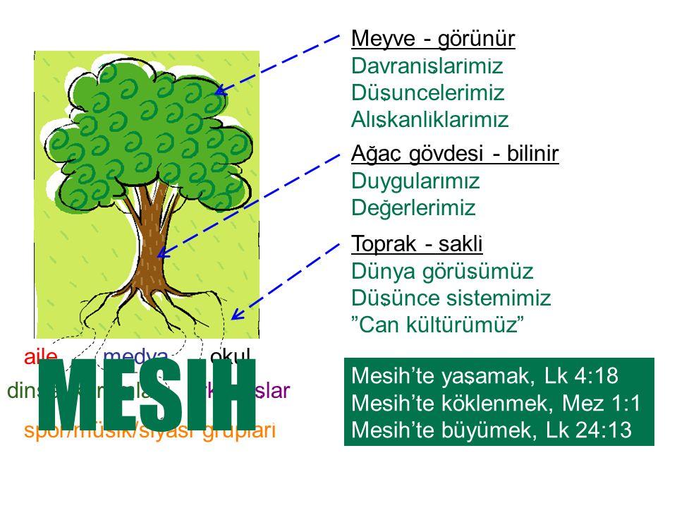 arkadaslar spor/müsik/siyasi gruplari dinsel kurumlar Agac gövdesi - bilinir Duygularimiz Degerlerimiz Meyve - görünür Davranislarimiz Düsuncelerimiz Aliskanliklarimiz Toprak - sakli Dünya görüsümüz Düsünce sistemimiz Can kültürümüz Mesih'te yasamak, Lk 4:18 Mesih'te köklenmek, Mez 1:1 Mesih'te büyümek, Lk 24:13 aileokulmedya MESIH