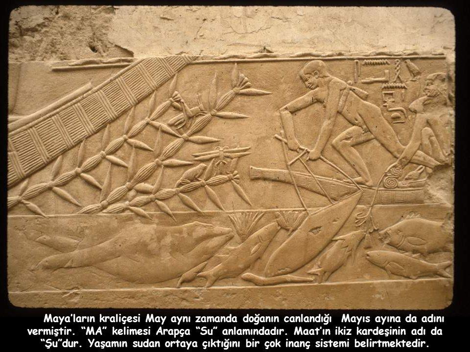 MA 'nın taşıdığı anlamlar insanları o kadar etki altında bırakmıştır ki, eski Mısır, Orta Doğu ve Uzak Doğuda bu sese benzer ses çıkaran hayvanlar dahi kutsal sayılmıştır.