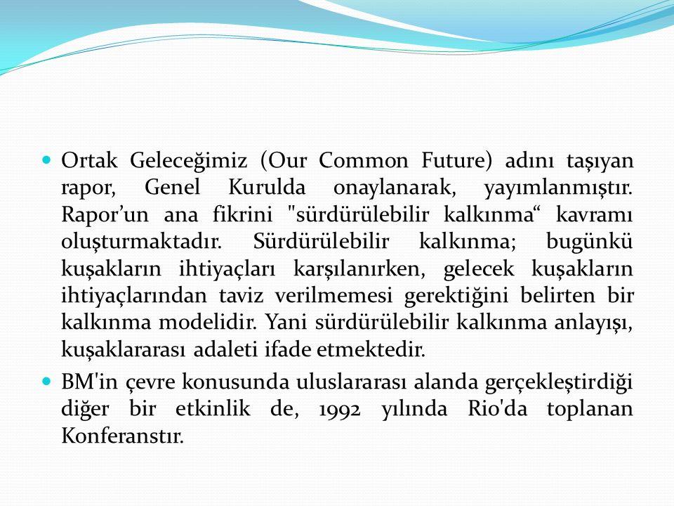 Ortak Geleceğimiz (Our Common Future) adını taşıyan rapor, Genel Kurulda onaylanarak, yayımlanmıştır.