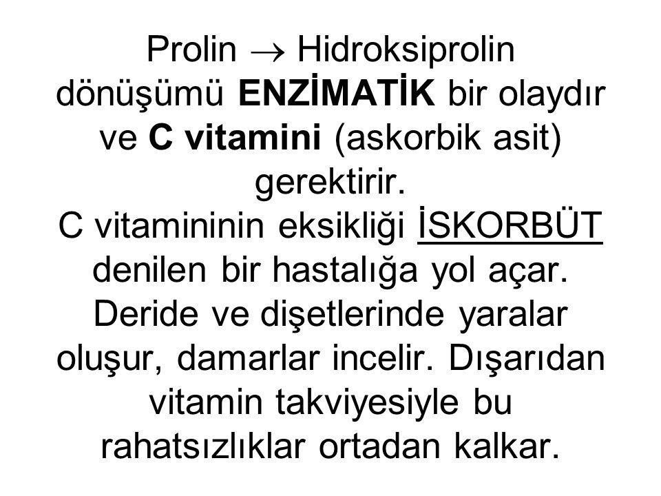 Prolin  Hidroksiprolin dönüşümü ENZİMATİK bir olaydır ve C vitamini (askorbik asit) gerektirir. C vitamininin eksikliği İSKORBÜT denilen bir hastalığ