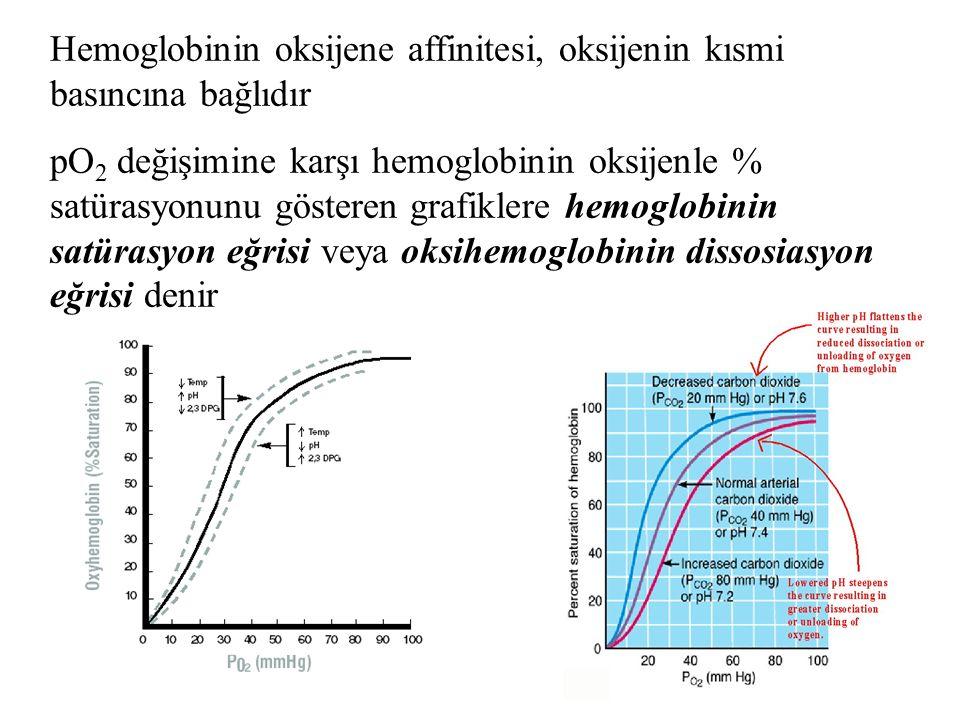 Hemoglobinin oksijene affinitesi, oksijenin kısmi basıncına bağlıdır pO 2 değişimine karşı hemoglobinin oksijenle % satürasyonunu gösteren grafiklere