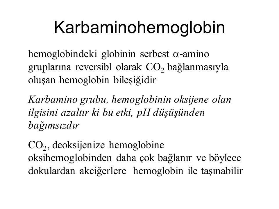 Karbaminohemoglobin hemoglobindeki globinin serbest  -amino gruplarına reversibl olarak CO 2 bağlanmasıyla oluşan hemoglobin bileşiğidir Karbamino gr