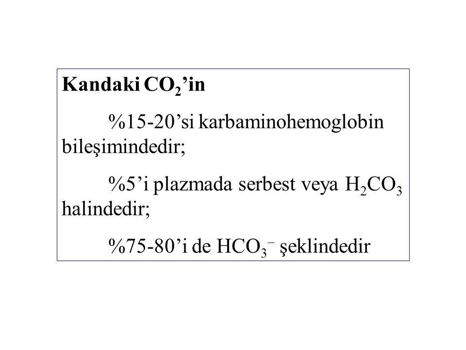 Kandaki CO 2 'in %15-20'si karbaminohemoglobin bileşimindedir; %5'i plazmada serbest veya H 2 CO 3 halindedir; %75-80'i de HCO 3  şeklindedir