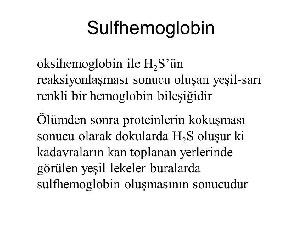 Sulfhemoglobin oksihemoglobin ile H 2 S'ün reaksiyonlaşması sonucu oluşan yeşil-sarı renkli bir hemoglobin bileşiğidir Ölümden sonra proteinlerin koku