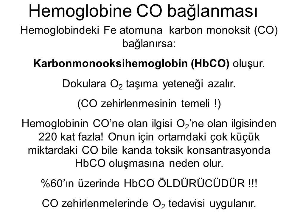 Hemoglobine CO bağlanması Hemoglobindeki Fe atomuna karbon monoksit (CO) bağlanırsa: Karbonmonooksihemoglobin (HbCO) oluşur. Dokulara O 2 taşıma yeten