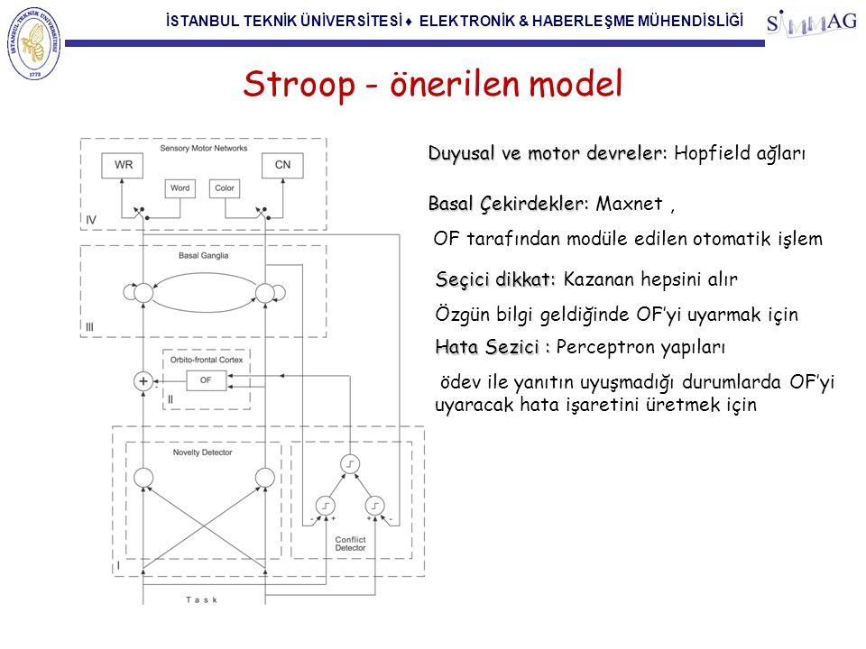İSTANBUL TEKNİK ÜNİVERSİTESİ ♦ ELEKTRONİK & HABERLEŞME MÜHENDİSLİĞİ Stroop - önerilen model Duyusal ve motor devreler: Duyusal ve motor devreler: Hopf