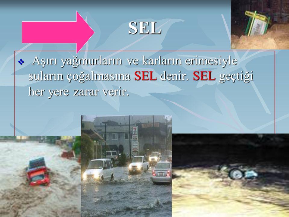 DOĞAL AFETLERAyten IŞILDAĞ18 SEL  Aşırı yağmurların ve karların erimesiyle suların çoğalmasına SEL denir. SEL geçtiği her yere zarar verir.