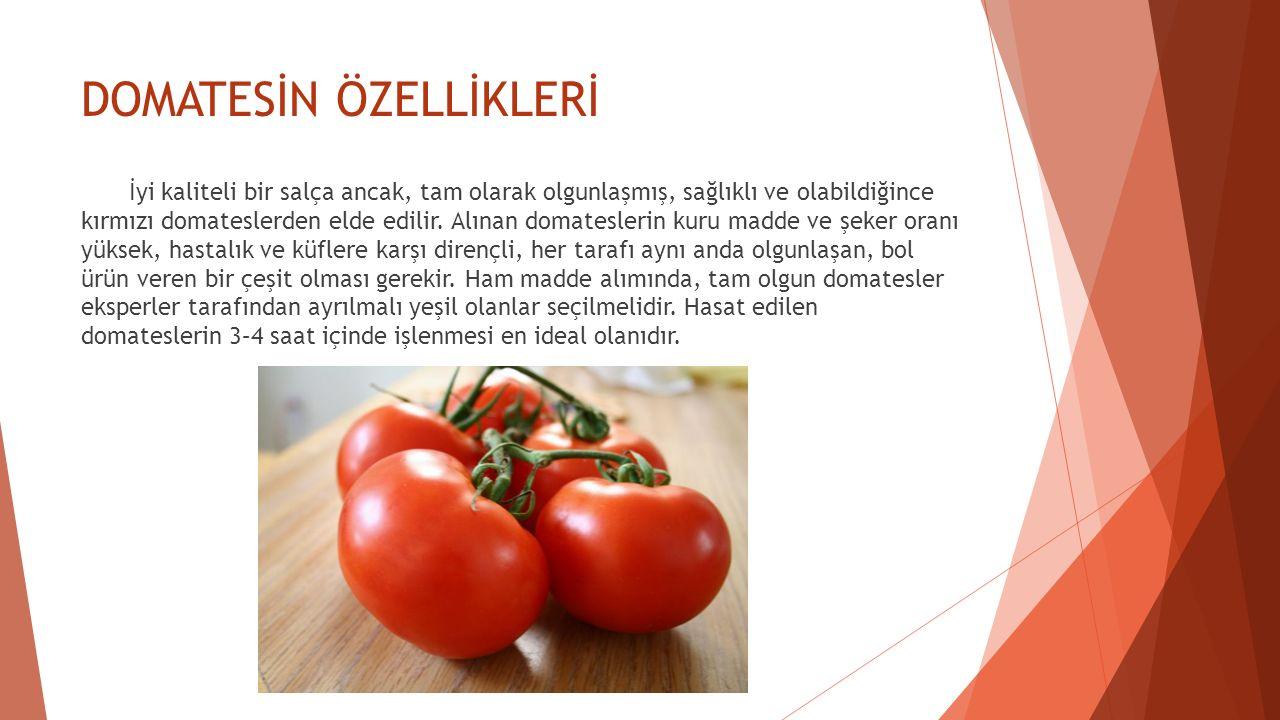 DOMATESİN ÖZELLİKLERİ İyi kaliteli bir salça ancak, tam olarak olgunlaşmış, sağlıklı ve olabildiğince kırmızı domateslerden elde edilir. Alınan domate