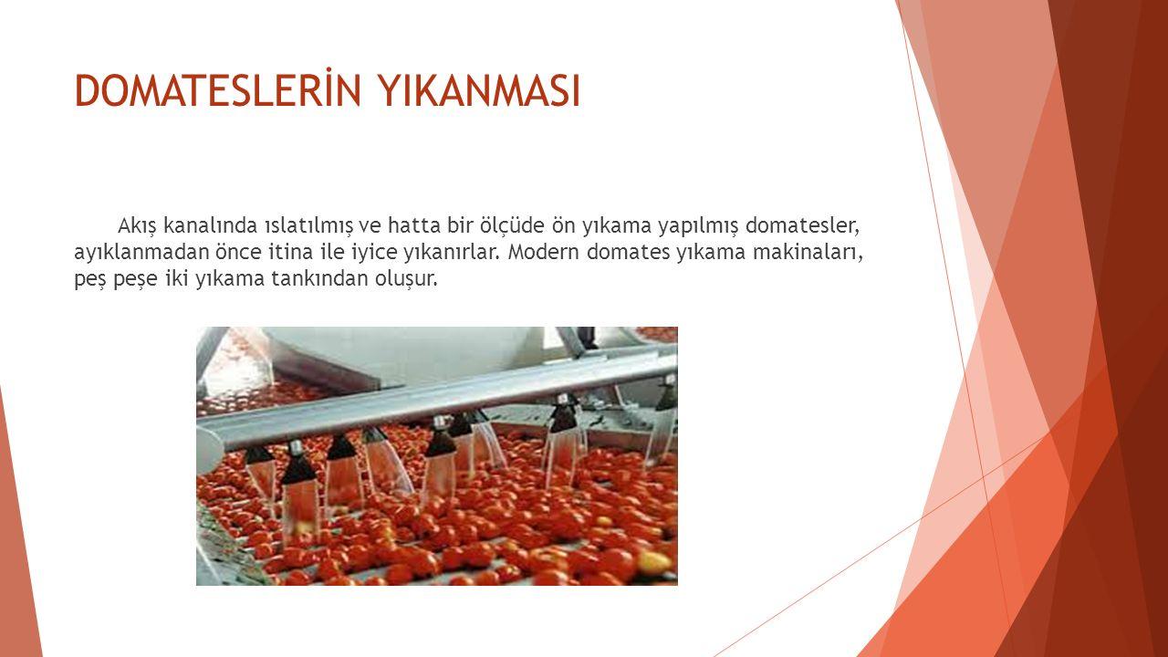 DOMATESLERİN YIKANMASI Akış kanalında ıslatılmış ve hatta bir ölçüde ön yıkama yapılmış domatesler, ayıklanmadan önce itina ile iyice yıkanırlar. Mode