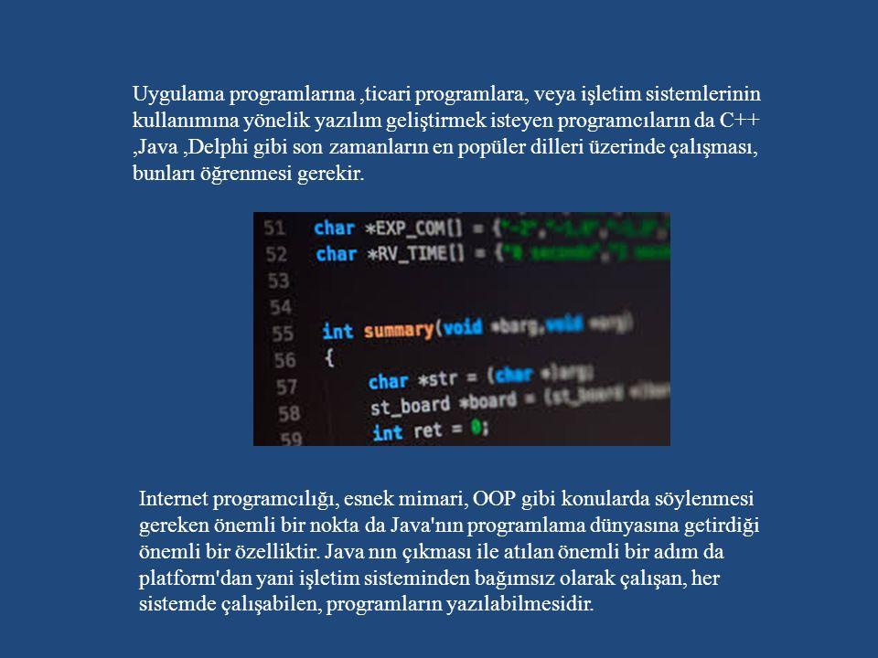 Uygulama programlarına,ticari programlara, veya işletim sistemlerinin kullanımına yönelik yazılım geliştirmek isteyen programcıların da C++,Java,Delphi gibi son zamanların en popüler dilleri üzerinde çalışması, bunları öğrenmesi gerekir.