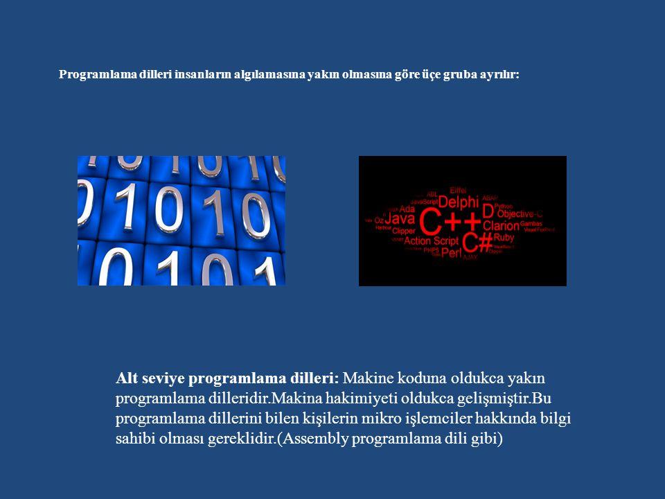 Programlama dilleri insanların algılamasına yakın olmasına göre üçe gruba ayrılır: Alt seviye programlama dilleri: Makine koduna oldukca yakın programlama dilleridir.Makina hakimiyeti oldukca gelişmiştir.Bu programlama dillerini bilen kişilerin mikro işlemciler hakkında bilgi sahibi olması gereklidir.(Assembly programlama dili gibi)