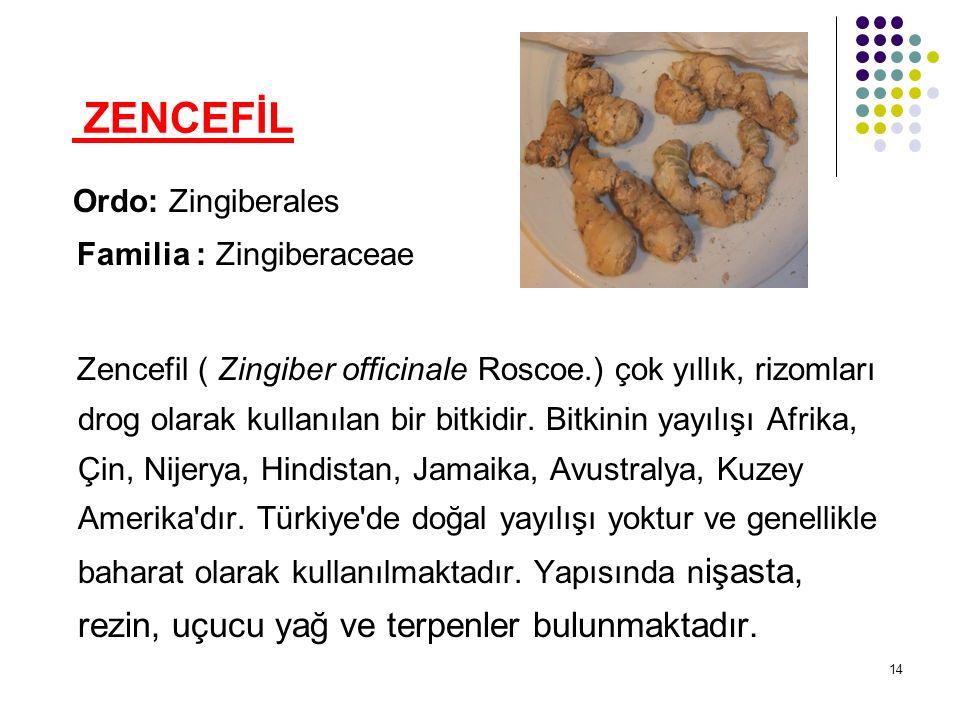 ZENCEFİL Ordo: Zingiberales Familia : Zingiberaceae Zencefil ( Zingiber officinale Roscoe.) çok yıllık, rizomları drog olarak kullanılan bir bitkidir.
