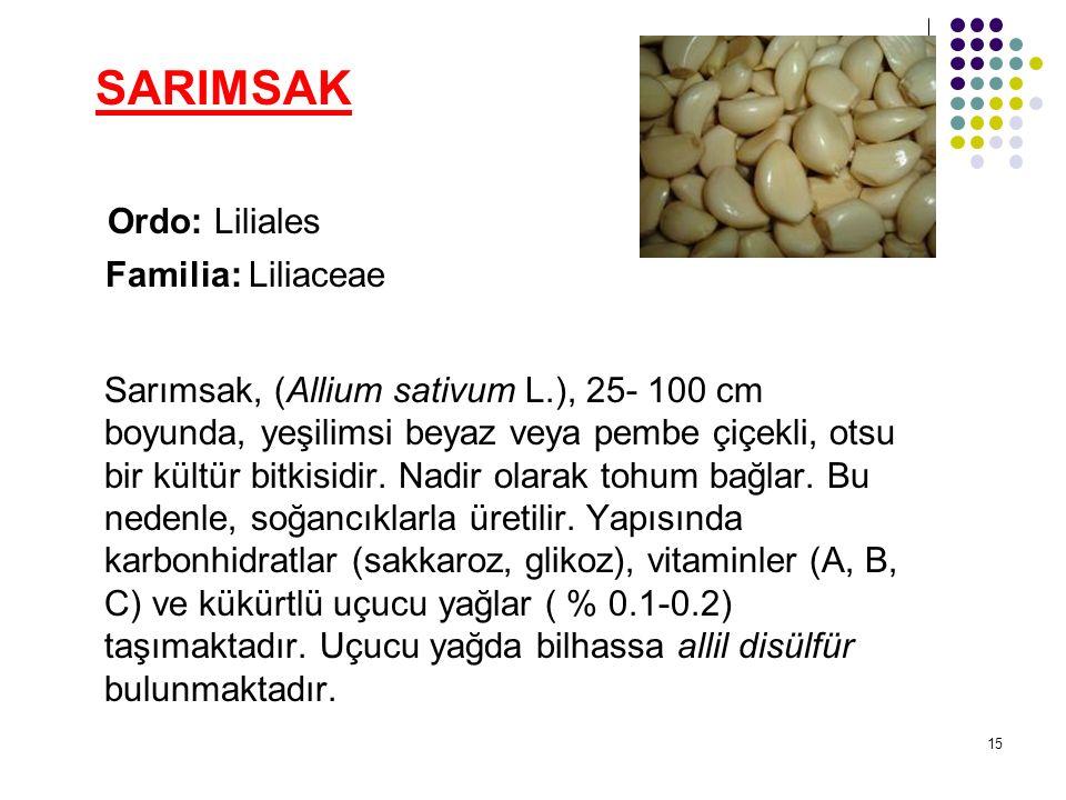 15 SARIMSAK Ordo: Liliales Familia: Liliaceae Sarımsak, (Allium sativum L.), 25- 100 cm boyunda, yeşilimsi beyaz veya pembe çiçekli, otsu bir kültür bitkisidir.