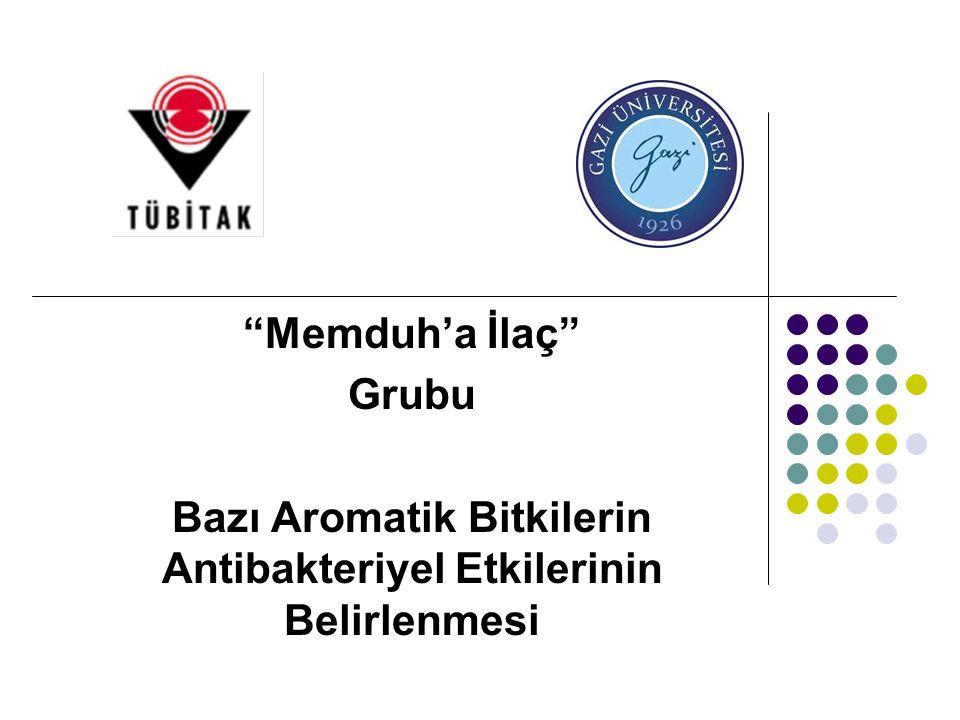 Memduh'a İlaç Grubu Bazı Aromatik Bitkilerin Antibakteriyel Etkilerinin Belirlenmesi