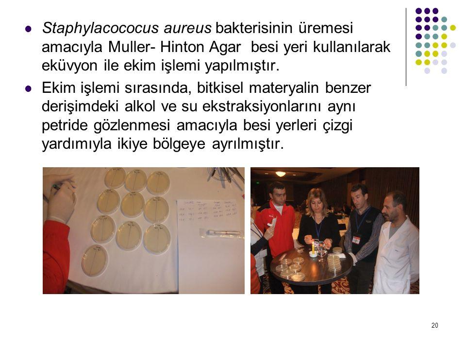 20 Staphylacococus aureus bakterisinin üremesi amacıyla Muller- Hinton Agar besi yeri kullanılarak eküvyon ile ekim işlemi yapılmıştır.