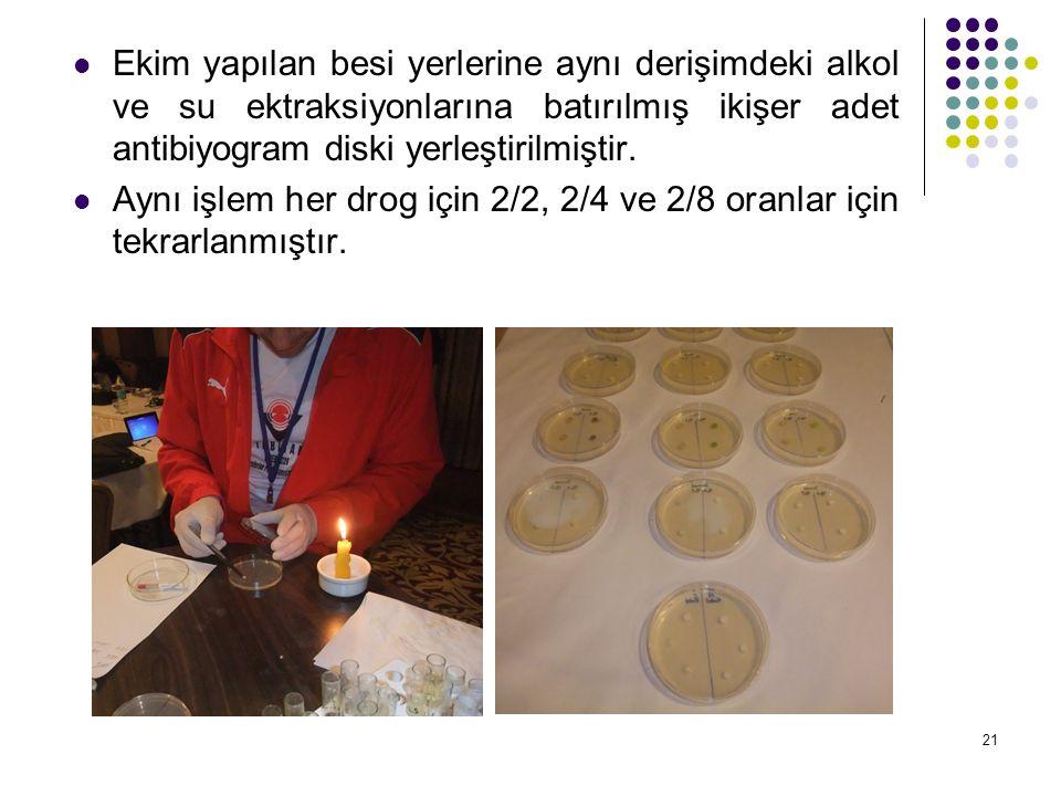 21 Ekim yapılan besi yerlerine aynı derişimdeki alkol ve su ektraksiyonlarına batırılmış ikişer adet antibiyogram diski yerleştirilmiştir.