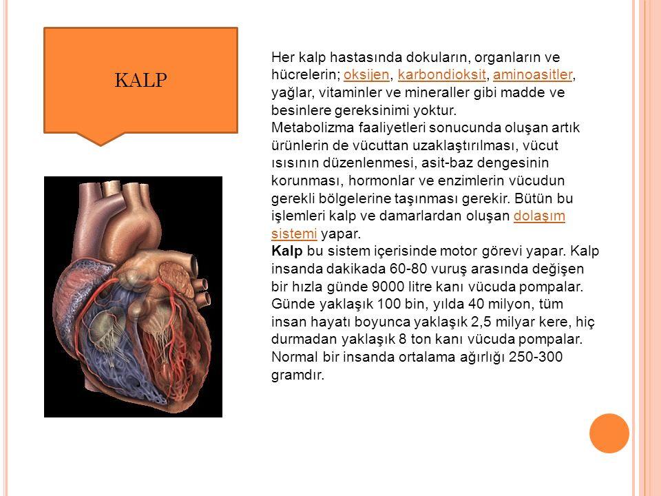 Her kalp hastasında dokuların, organların ve hücrelerin; oksijen, karbondioksit, aminoasitler, yağlar, vitaminler ve mineraller gibi madde ve besinlere gereksinimi yoktur.oksijenkarbondioksitaminoasitler Metabolizma faaliyetleri sonucunda oluşan artık ürünlerin de vücuttan uzaklaştırılması, vücut ısısının düzenlenmesi, asit-baz dengesinin korunması, hormonlar ve enzimlerin vücudun gerekli bölgelerine taşınması gerekir.