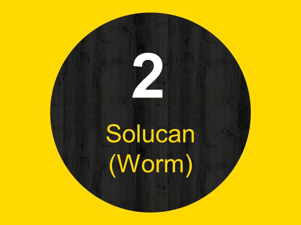2 Solucan (Worm)