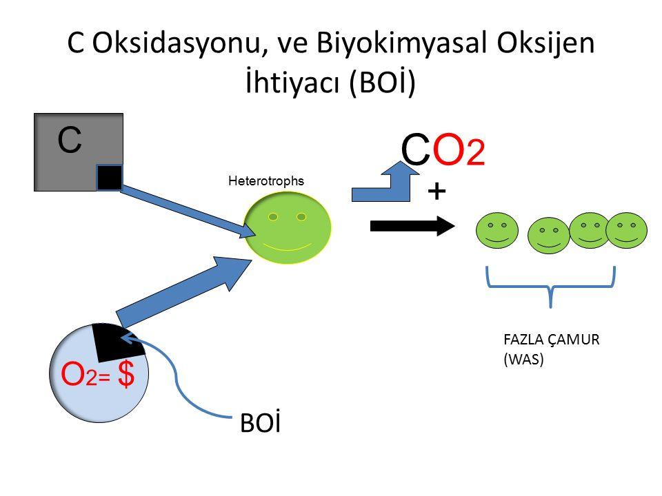 C Oksidasyonu, ve Biyokimyasal Oksijen İhtiyacı (BOİ) C O 2= $ Heterotrophs CO2CO2 + BOİ FAZLA ÇAMUR (WAS)