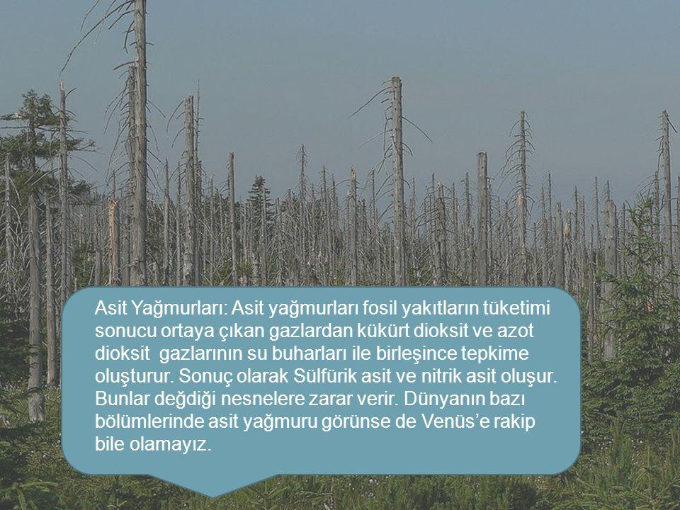Asit Yağmurları: Asit yağmurları fosil yakıtların tüketimi sonucu ortaya çıkan gazlardan kükürt dioksit ve azot dioksit gazlarının su buharları ile bi