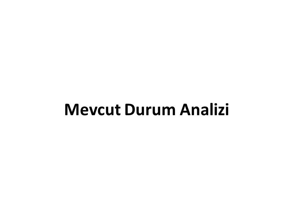 Mevcut Durum Analizi
