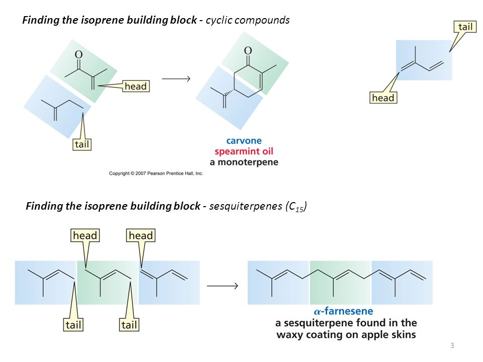 Finding the isoprene building block - cyclic compounds Finding the isoprene building block - sesquiterpenes (C 15 ) 3