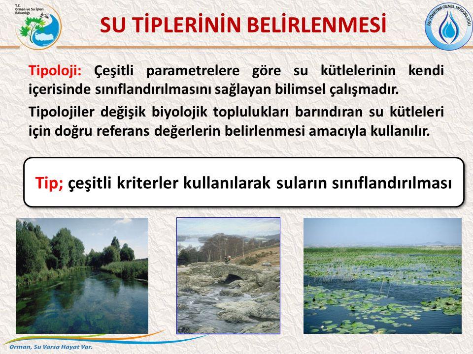 Tipoloji: Çeşitli parametrelere göre su kütlelerinin kendi içerisinde sınıflandırılmasını sağlayan bilimsel çalışmadır.