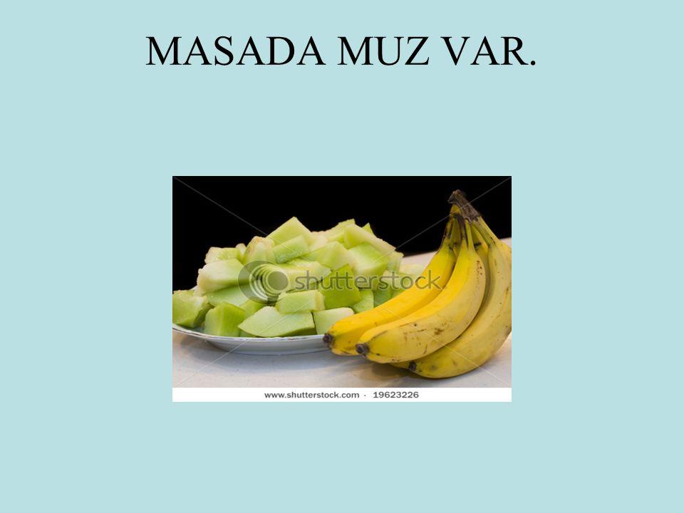 MASADA MUZ VAR.