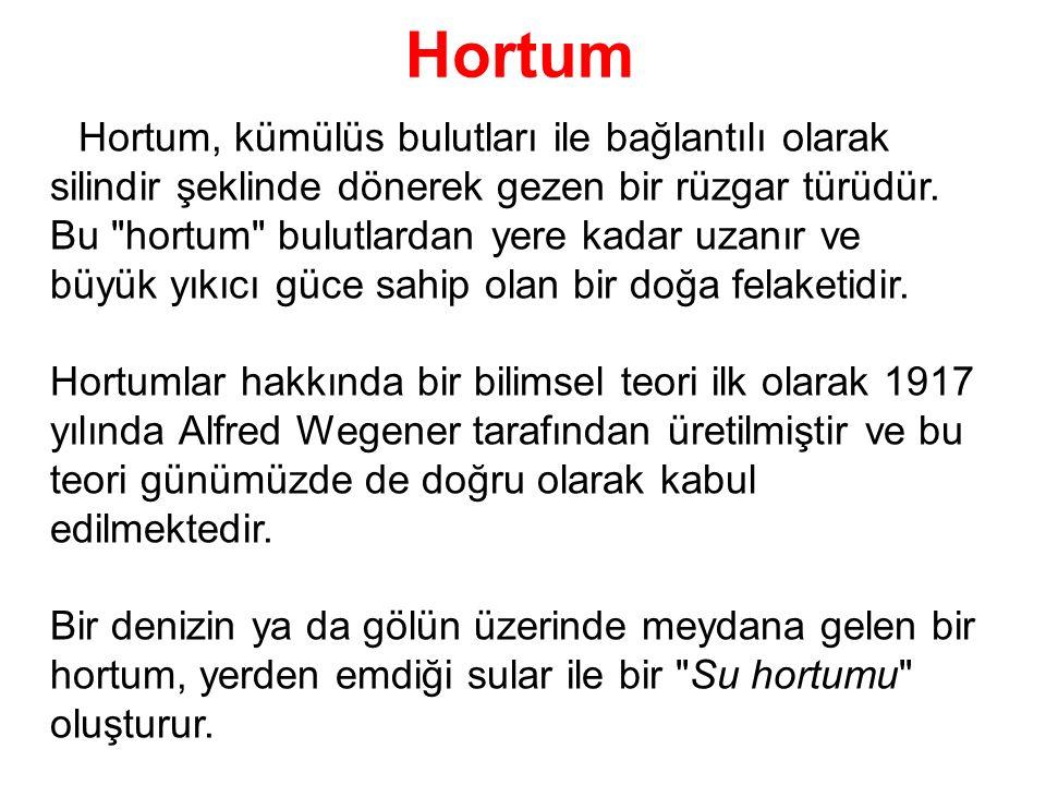 Hortum Hortum, kümülüs bulutları ile bağlantılı olarak silindir şeklinde dönerek gezen bir rüzgar türüdür.