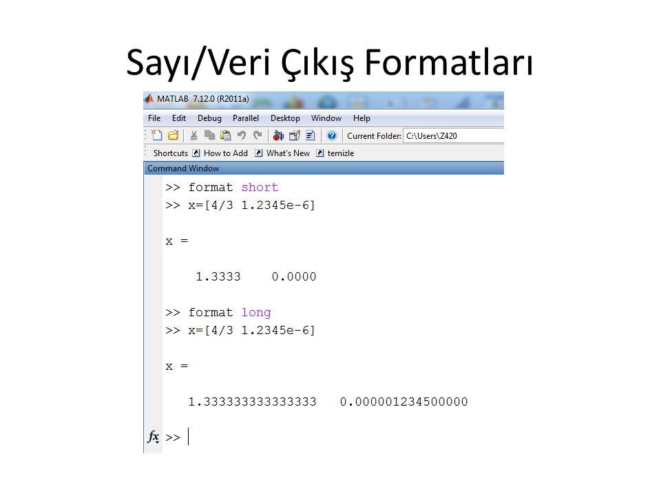 Sayı/Veri Çıkış Formatları