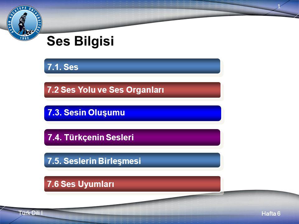 Türk Dili I Hafta 6 1 Ses Bilgisi 7.1. Ses 7.2 Ses Yolu ve Ses Organları 7.3.