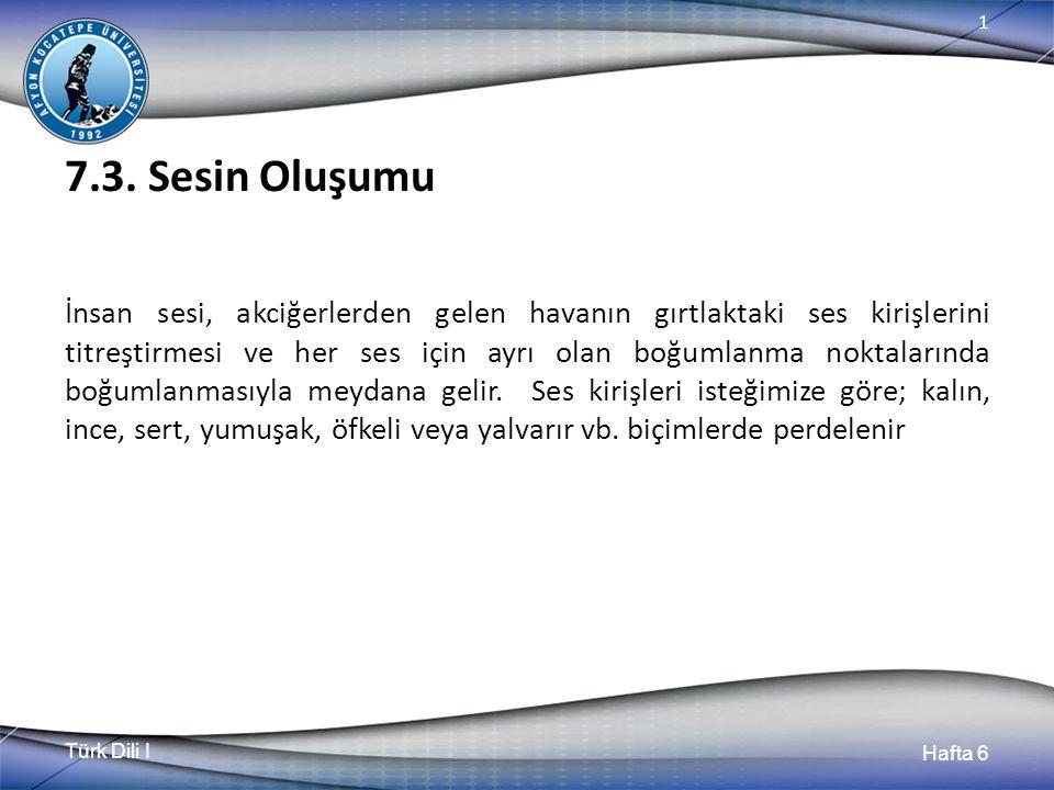 Türk Dili I Hafta 6 1 7.3.