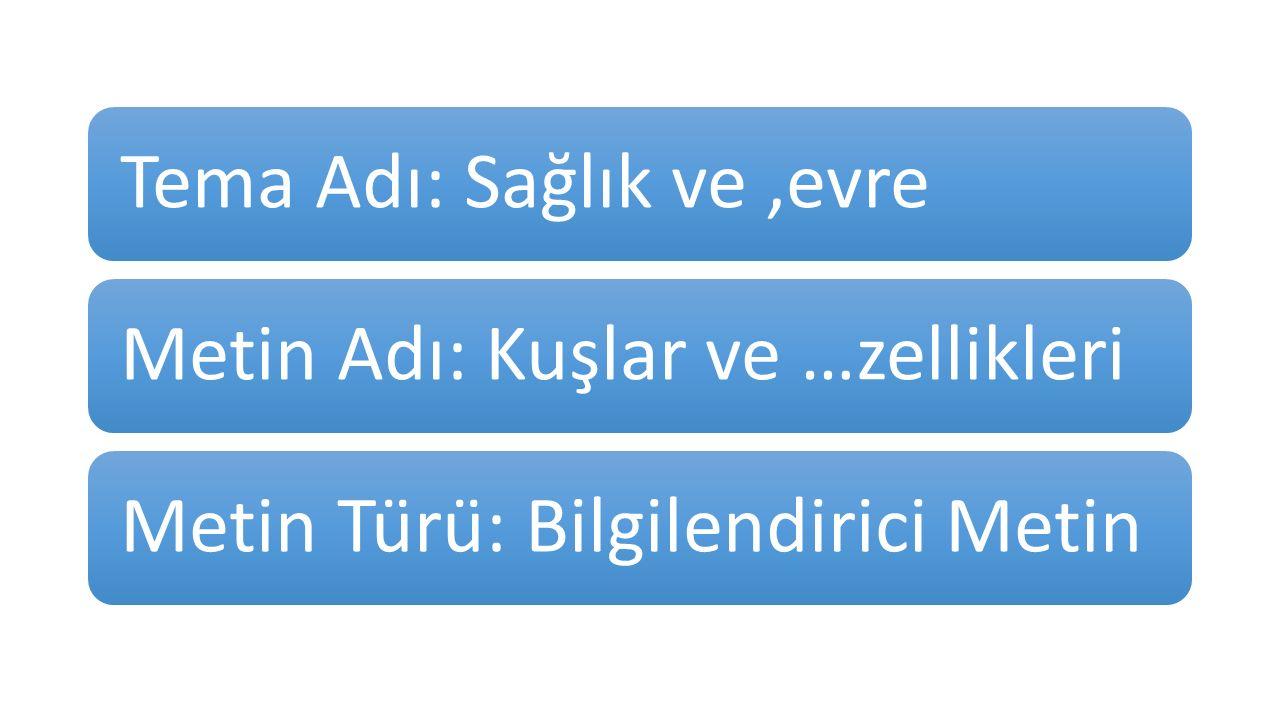 C.ZİHİNDE YAPILANDIRMA 1.