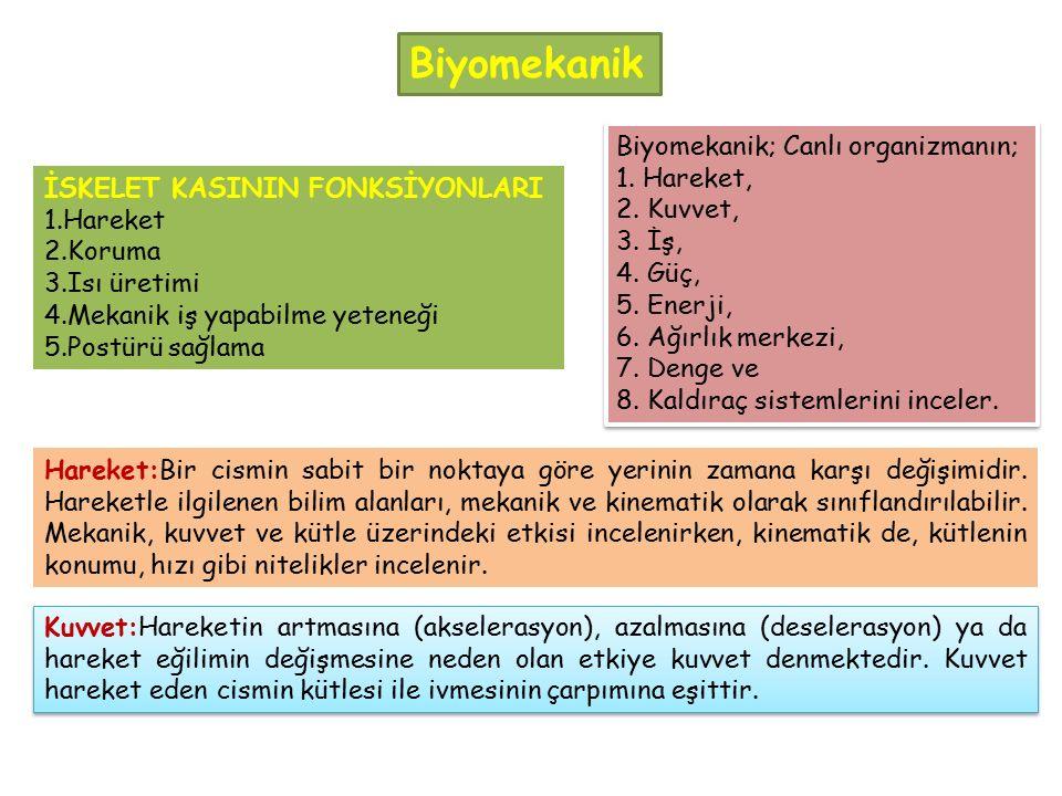 Biyomekanik; Canlı organizmanın; 1. Hareket, 2. Kuvvet, 3. İş, 4. Güç, 5. Enerji, 6. Ağırlık merkezi, 7. Denge ve 8. Kaldıraç sistemlerini inceler. Bi