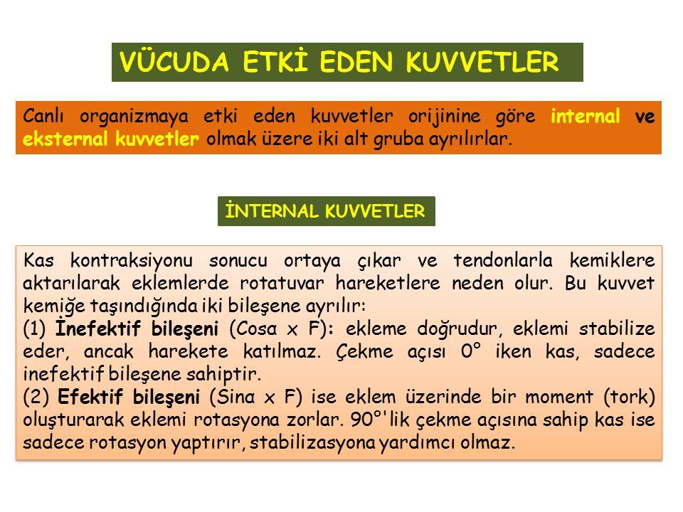 Canlı organizmaya etki eden kuvvetler orijinine göre internal ve eksternal kuvvetler olmak üzere iki alt gruba ayrılırlar. İNTERNAL KUVVETLER Kas kont