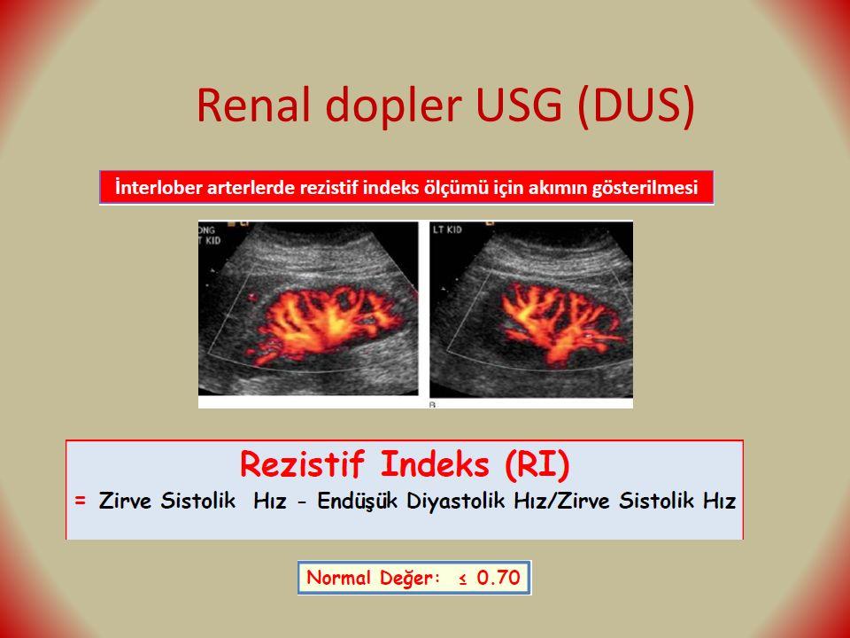 Renal dopler USG (DUS)