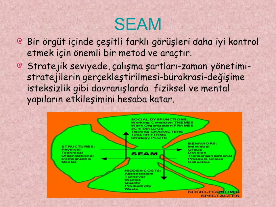 SEAM Bir örgüt içinde çeşitli farklı görüşleri daha iyi kontrol etmek için önemli bir metod ve araçtır. Stratejik seviyede, çalışma şartları-zaman yön